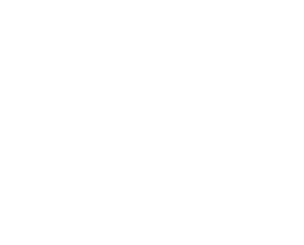 Click Here to Enter the Gallery